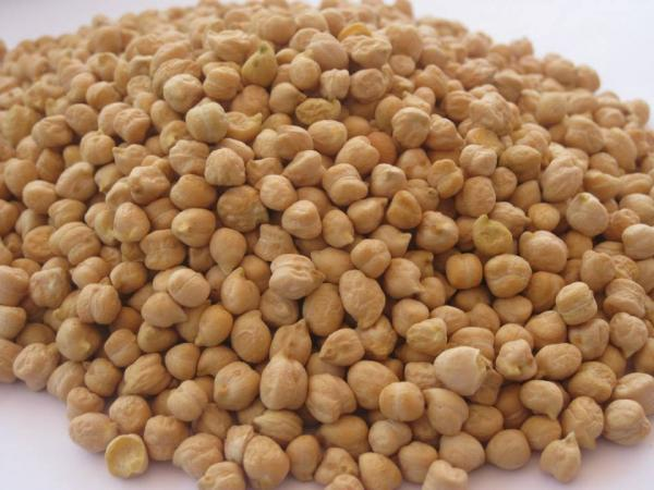 Chickpeas ord river
